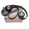 Комплект ремня ГЕНЕРАТОРА+AC с роликами с 10г/16V оригинал 117206746R